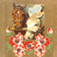 Equestrian Horse Pictures and Wallpapers Icon