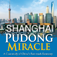 Shanghai Pudong Miracle Icon
