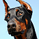 SlidePuzzle – Doberman Icon