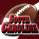 South Carolina Fan (Reflect7) Icon