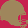 San Francisco 49ers 2010 News and Rumors Icon
