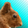 Squirrel Arcade Icon