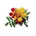 "Fresh Flowers ""iPad Version"" Icon"