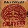 Calavera Comics Wallpaper Art Icon